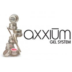 AXXIUM GEL SYSTEM
